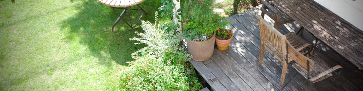 生活スタイルに併せて、お庭も成長を
